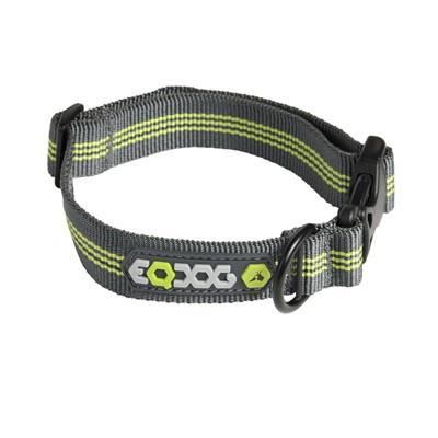 EQDog Classic Collar